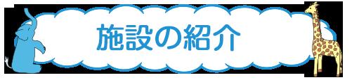 shokai-sumaho